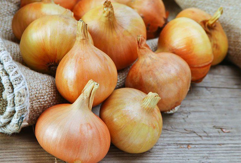 فوائد البصل أهم 8 فوائد لتناول البصل للحامل والشعر